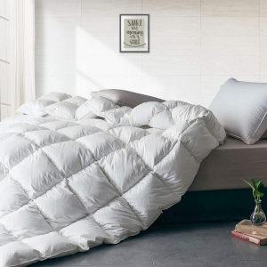 APSMILE All Seasons Down Comforter
